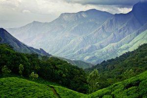 Munnar India