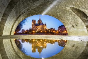 Notre Dame Puddle