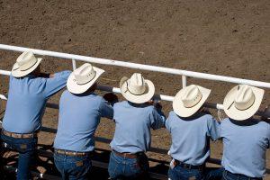 Stampede Spectators
