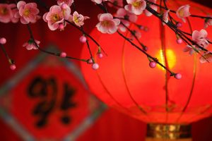 Traditional Lantern And Plum