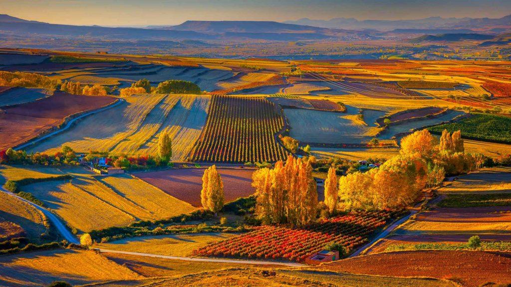 Clavijo Landscape