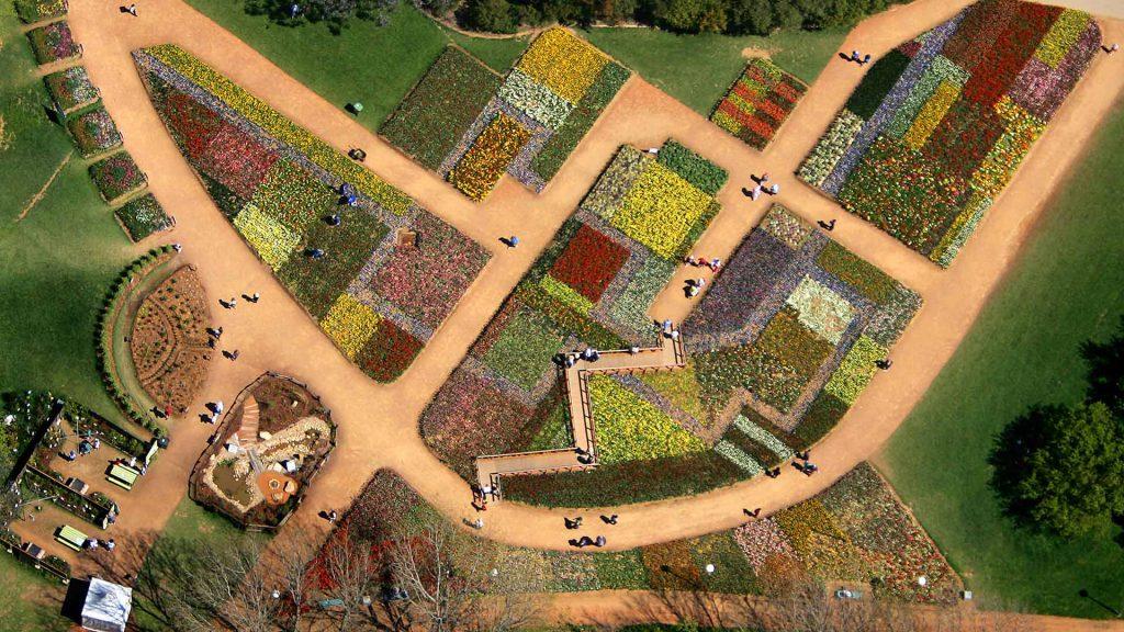 Australian Billabong Floriade