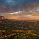 Uncompahgre Forest