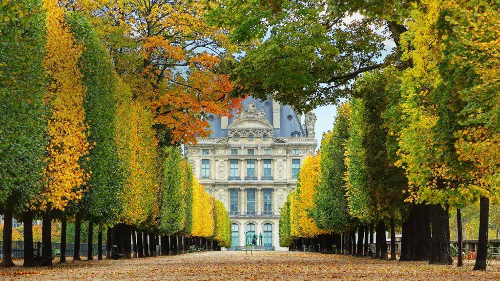 Louvre Autumn