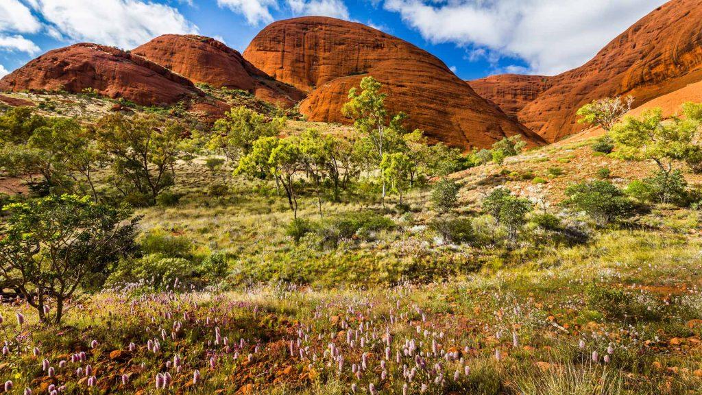 Spring Uluru