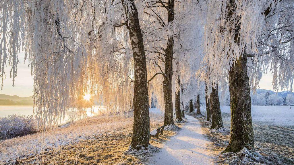 Uffing Staffelsee Winter