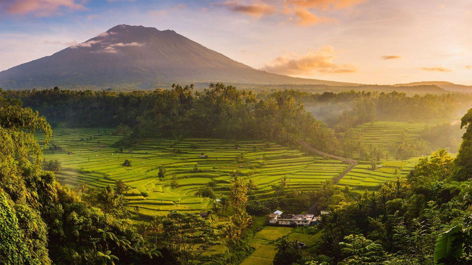 lagu top 2019 indonesia