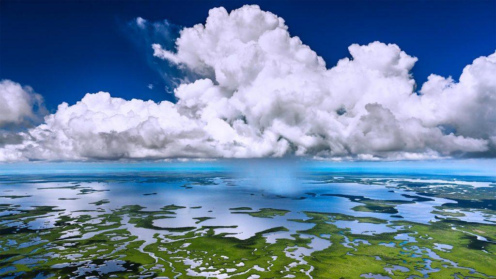 Everglades Showers