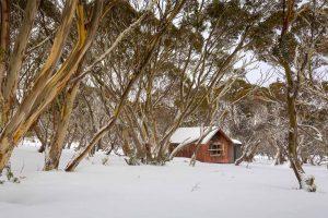 Cattlemans Hut