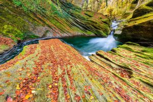 Gorge Savoie