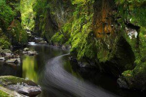 Mossy Canyon