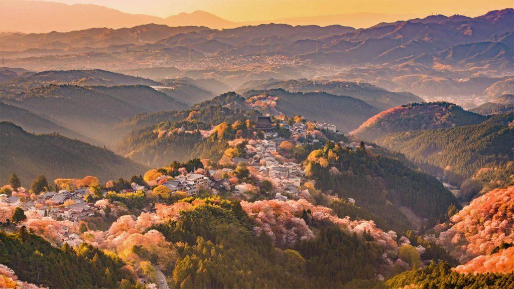 Yoshinoyama Spring