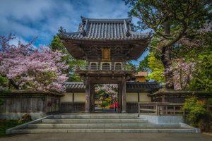 GG Tea Garden