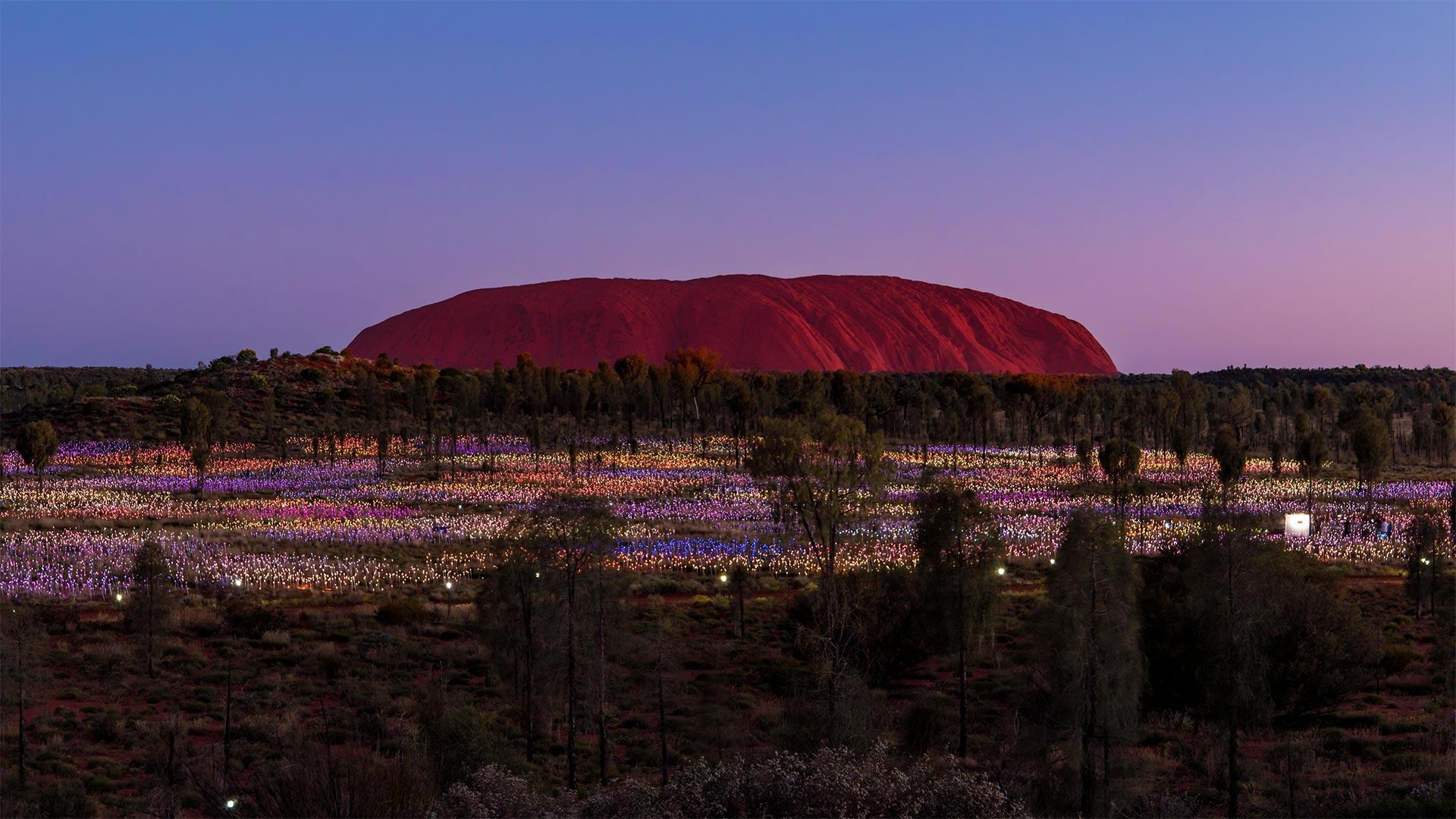Bruce Munro Uluru