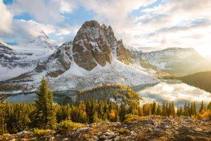 Fall Assiniboine