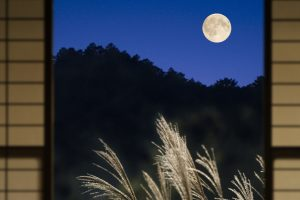 Moon Kyoto