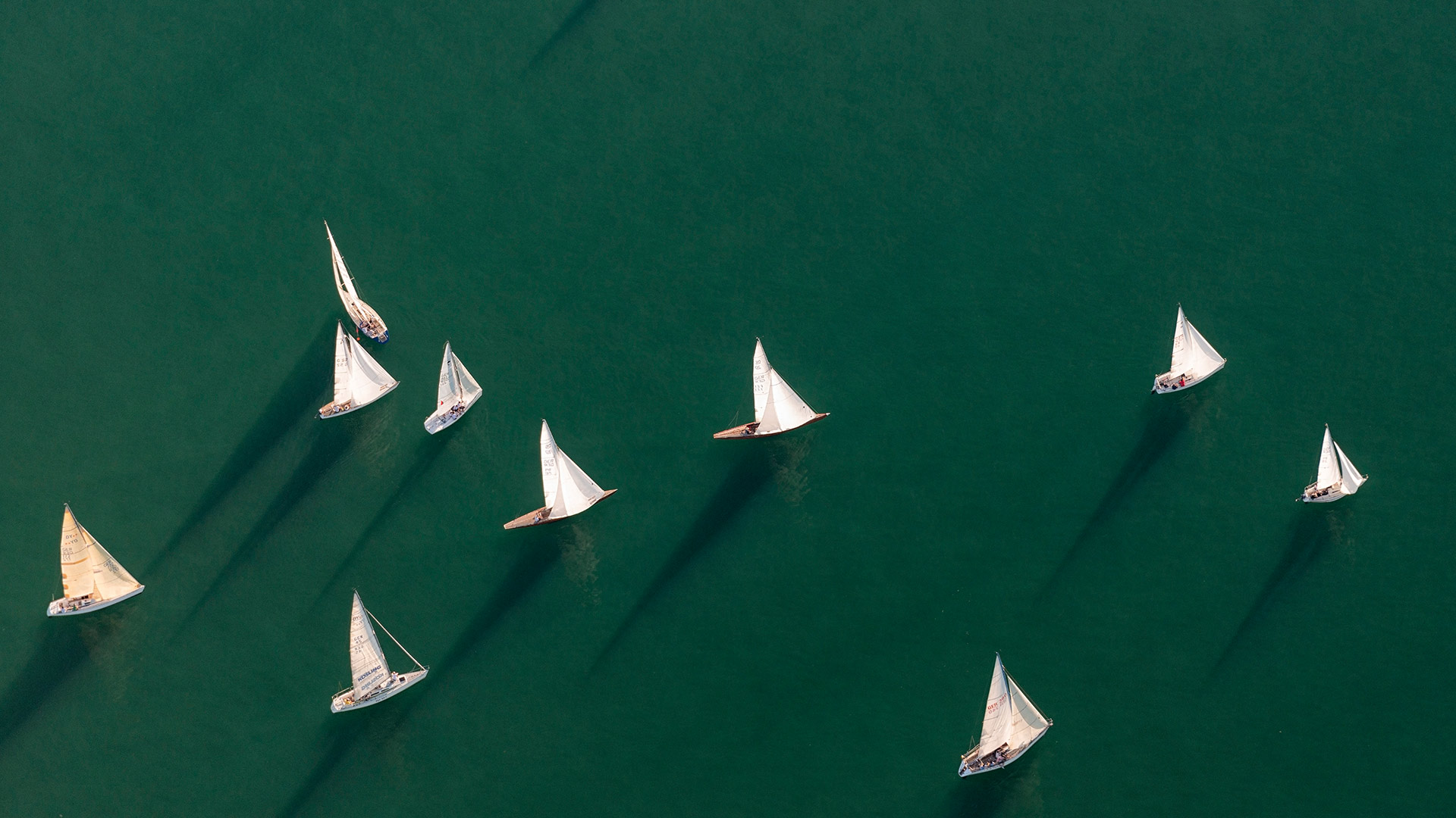 Segelboote Bodensee